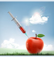apple with a medical syringe fruit with nitrates vector image