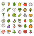cute vegetable and mushroom filled outline icon vector image