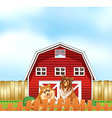 Dogs and barn vector image vector image