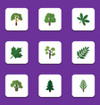 flat icon ecology set of park acacia leaf garden vector image