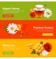 Honey banner set vector image