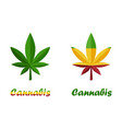 icons leaves cannabis herb or marijuana vector image