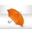 Orange umbrella vector image vector image