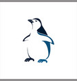 penguin flat color logo template vector image vector image