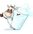 cute cow behind glass of milk - isolated on white vector image vector image