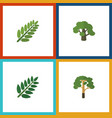 flat icon bio set of leaves acacia leaf wood and vector image vector image