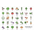 Vegetables icon isolated Spices logo Fresh vector image
