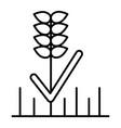 wheat thin line icon grain vector image