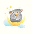 baby animal owl sleeping at night sitting vector image vector image