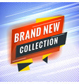 brand new collection promotional concept template vector image
