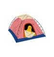 chicken in tent bird character having hiking vector image vector image