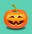 halloween pumpkin face - crazy smile jack o vector image