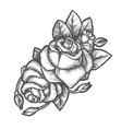 sketch rose flower for tattoo or romantic gift vector image vector image