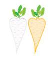 symbolls root vegetables vector image vector image