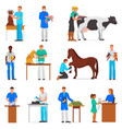 veterinary veterinarian doctor man or woman vector image vector image