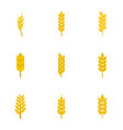 wheat ears icon set flat style vector image vector image