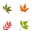 fall leaves flat icons vector image