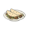 mexican food fajita or burrito vector image
