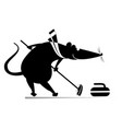 rat or mouse plays curling isolated vector image vector image