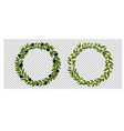 two olives wreath isolated transparent background vector image vector image