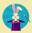 white rabbit in magical hat label of magic show vector image
