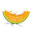 with isolated orange slice of melon vector image vector image