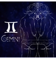 Zodiac sign of Gemini vector image