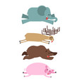 dead animals set 2 elephant and deer bear and pig vector image