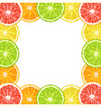 decorative frame from citrus slices - lime vector image