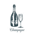 hand sketched champagne bottle and glassvintage vector image