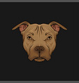 head of bulldog face of pet animal hand drawn vector image