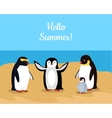 Hello Summer Funny Emperor Penguins Family vector image vector image