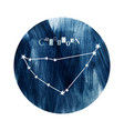 the capricorn zodiac constellation vector image