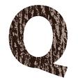 bark letter Q vector image