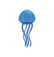 blue jellyfish phyllorhiza punctata species of vector image vector image