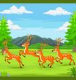 cartoon deers running in forest vector image vector image