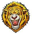 Cartoon head angry lion mascot vector image