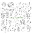Doodle set of vegetables vector image