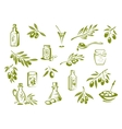 Green fresh pickled olives and olive oil symbols vector image