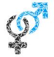heterosexual symbol mosaic of triangles vector image vector image