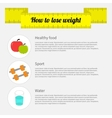 How to lose weight infographic Healthy food sport vector image vector image