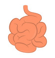 isolated human small intestine vector image