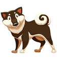 Lovable brown dog vector image