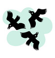 round flying birds vector image vector image
