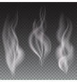 White smoke waves transparent vector image