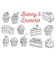Cake cupcake fruit dessert and berry pie sketch vector image