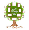 green family tree with picture frames vector image vector image