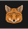 head of red fox face of wild animal hand drawn vector image