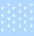 pattern swallow silhouette on blue vector image vector image