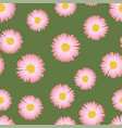 pink aster daisy seamless on green background vector image vector image